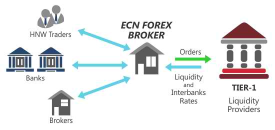 Top ecn forex brokers